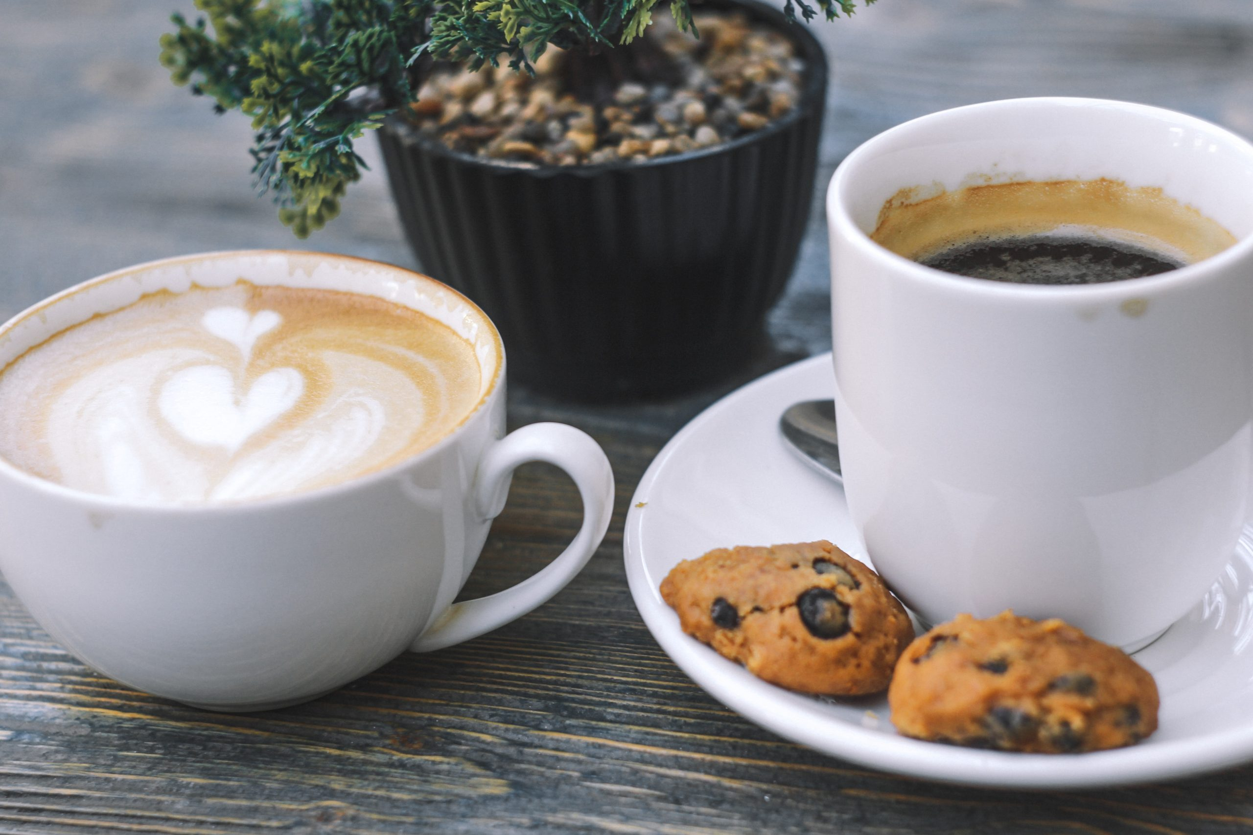 The Gift of Simple Pleasures, Cup of black coffee with cookies on saucer
